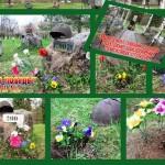Цветы Победы школа №3 (4)